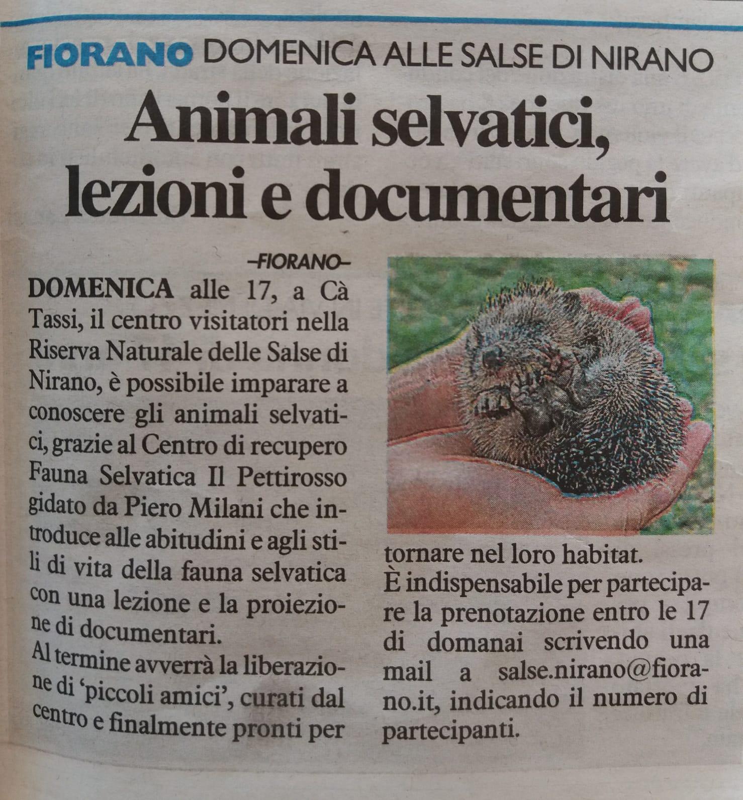 """Domenica 28 Luglio 2019 """"ANIMALI SELVATICI E DOCUMENTARI – ORE 17.00 a Cà Tassi"""